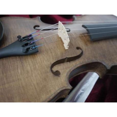 magnifique violon adulte 4/4 en étui rectangulaire