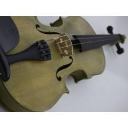 violon 4/4 vert étui rectangulaire avec archet