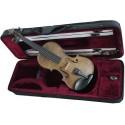 magnifique violon taille 3/4 en étui rectangulaire
