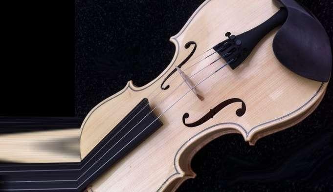 violon incolore nervuré